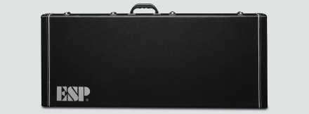 RS GUITAR CASE