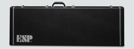 AP BASS CASE